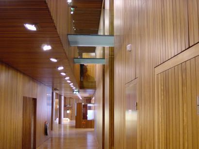 Além da madeira maciça têm aparecido no mercado produtos derivados e que a substituem quando o pretendido são carpintarias pintadas ou mais económicas.